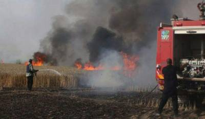 b2ap3_thumbnail_Negev-Fire-and-Rescue-Squad-fire-in-field.jpg